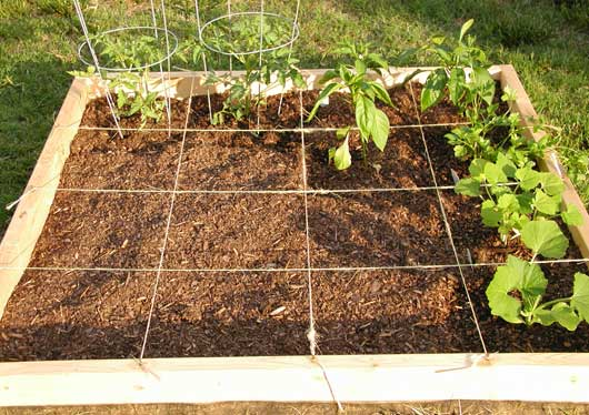 Grow your garden square by square